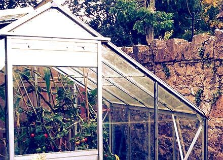 armagh_greenhouse